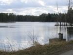 Rybaření - Rybaření na vlastním rybníce.